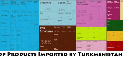 Top Products Imported by Turkmenistan