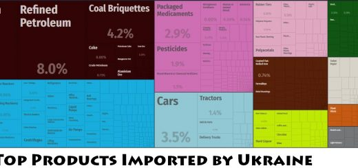Top Products Imported by Ukraine