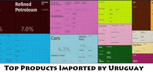 Top Products Imported by Uruguay