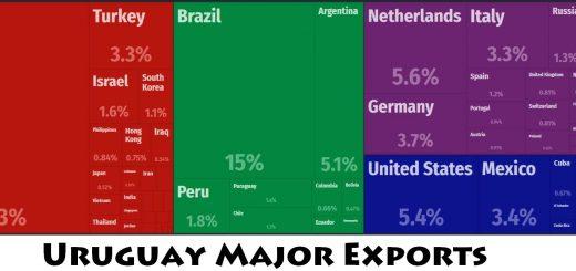Uruguay Major Exports