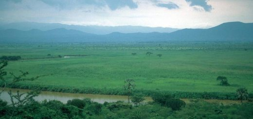 Burundi Country Population