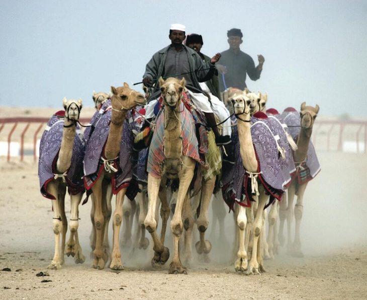 Qatar Country Population
