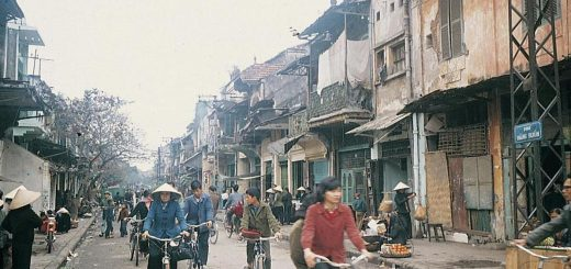 Vietnam Country Population